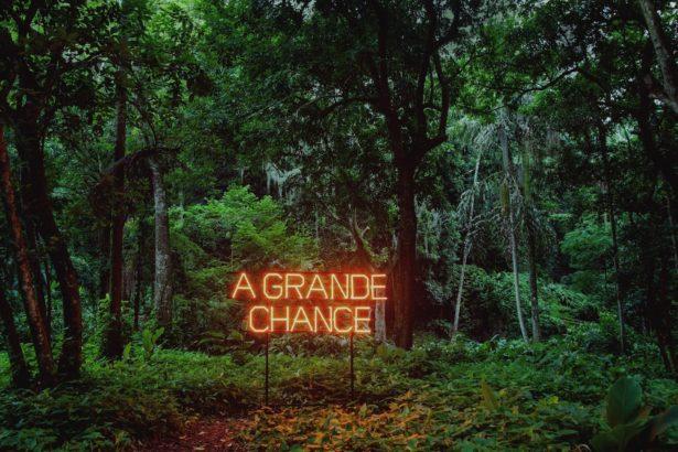parra_chance_1600